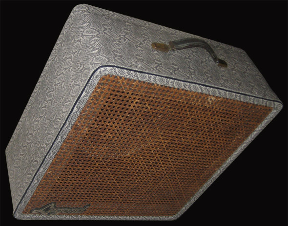 legend, speaker cabinet, snakeskin, tolex, python, snake, upholstery, amp, burnmethod